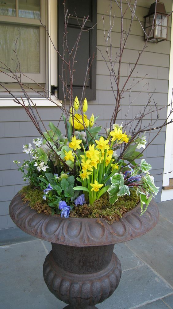 a bold spring outdoor decoration of a large urn with daffodils, various blooms, branches and moss is cool