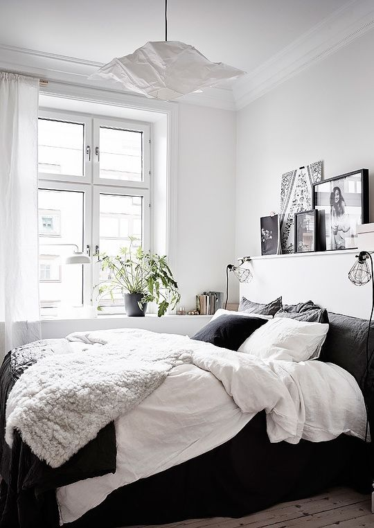 a contrasting bedroom wiht a black bed, open shelves, a potted plant and a pendant paper lamp