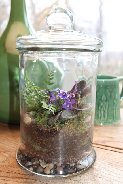 a glass jar with greenery, moss, purple blooms and pebbles is a lovely spring or summer terrarium
