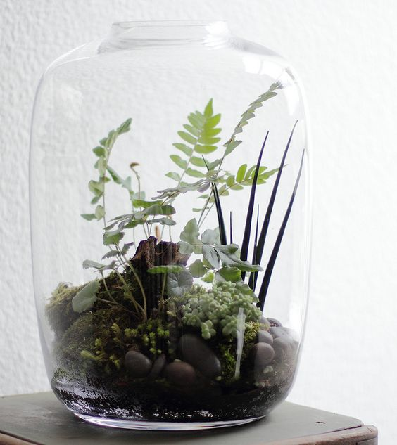 a glass jar with greenery, pebbles and driftwood looks very natural and feels like woodlands in spring