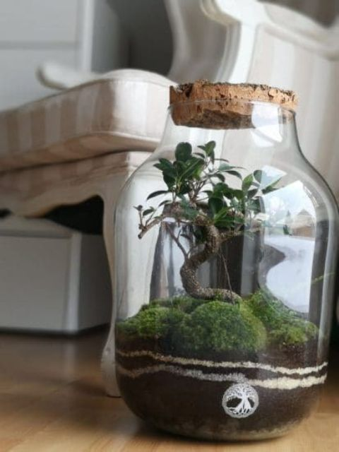 a large jar with moss balls and a mini treee is a lovely idea of a spring decoration or centerpiece
