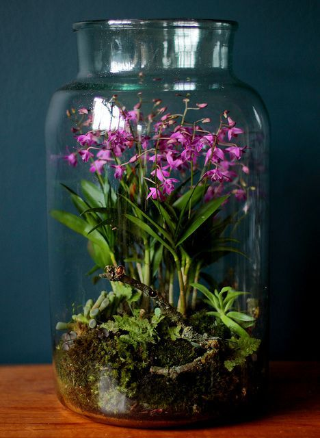 a large jar with moss, ferns and bold pink blooms is a pretty idea for a spring-inspired space and feels natural