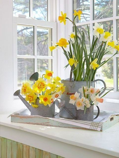 a rustic decoration for spring – a tray with galvanized watering cans and daffodils is a lovely idea for a rustic spring space