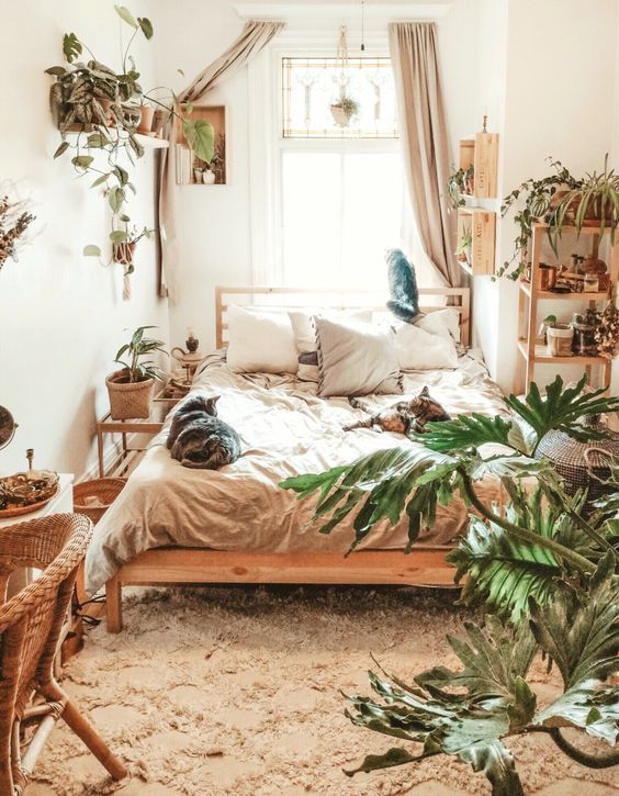 a small boho bedroom with wooden and wicker furniture, potted greenery, neutral textiles is flooded with light