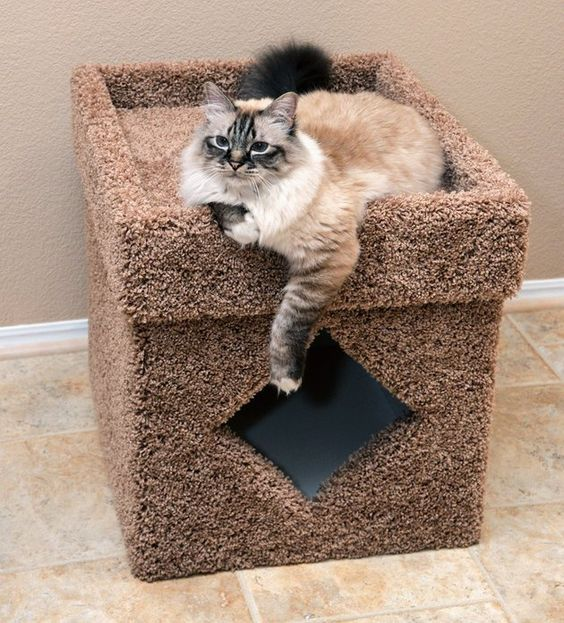 a small fluffy box with a cat litter box inside and cat bed on top is a timeless solution loved by many cats