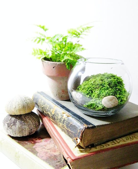 a small terrarium with greenery and pebbles is a cool idea for a spring-inspired space