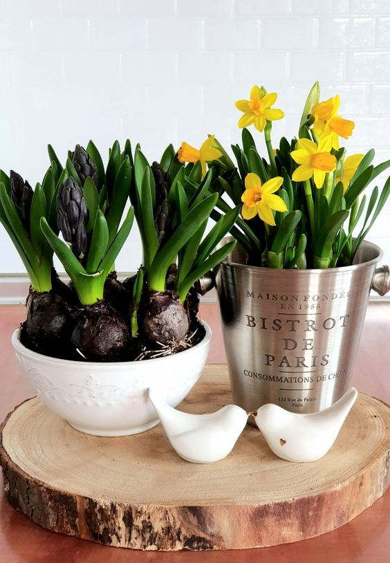 a spring centerpiece of a wood slice, birds, a bowl with hyacinths and a galvanized bucket with daffodils is wow