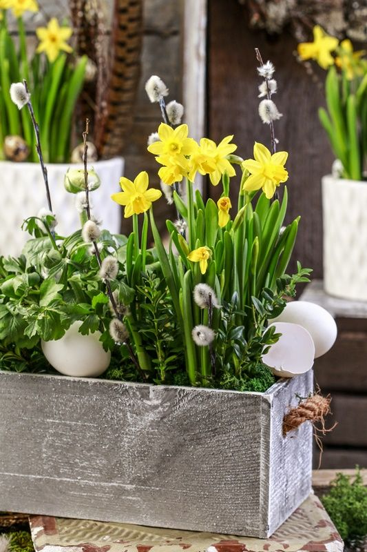 a spring centerpiece of a wooden box, willow, daffodils, fake eggs is a gorgeous idea for a spring space