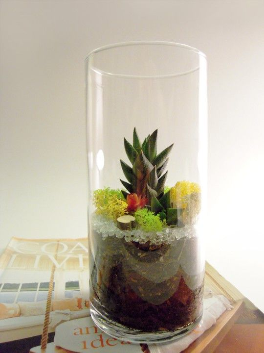 a tall vase with wood, moss, pebbles and a succulent is a pretty spring decoration to make yourself