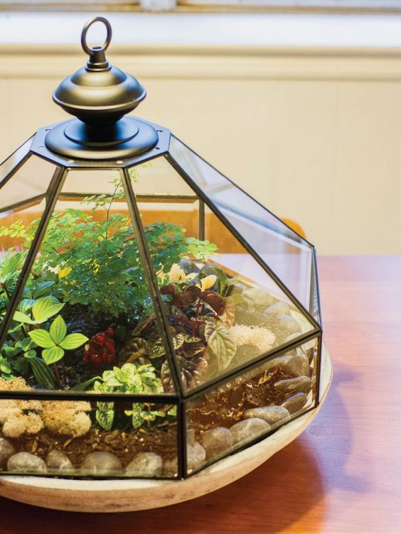 a terrarium with pebbles, moss, greenery and colorful plants will bring a vintage spring feel to the space