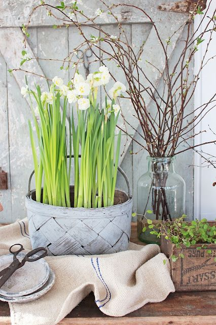 a whitewashed basket with daffodils will give a fresh rustic touch to your space and will make it feel like spring