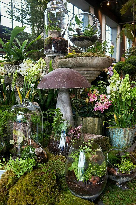 a whole arrangement of terrariums with greenery, pebbles, driftwood and other stuff is great for spring
