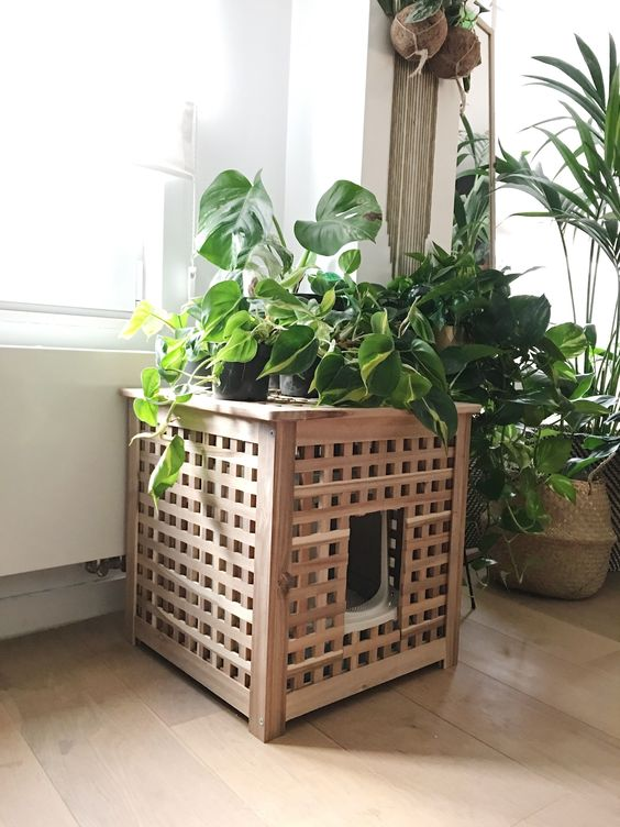an IKEA Hol table hack with a cat litter box inside and lots of plants on top fulfills two functions