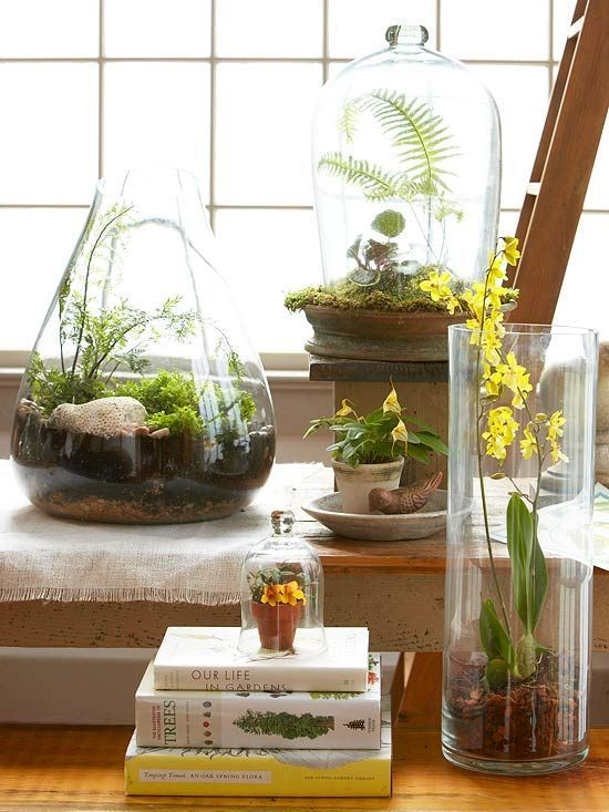 an arrangement of various glass vases with greenery, moss, blooms, ferns and pebbles will turn your space into a spring one