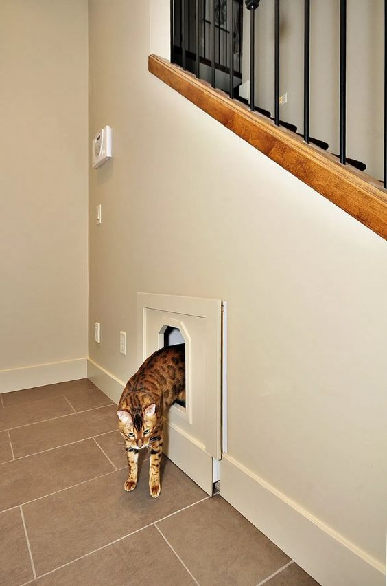 build in a cat litter box into your staircase space, it can be a drawer that is to pull out for cleaning