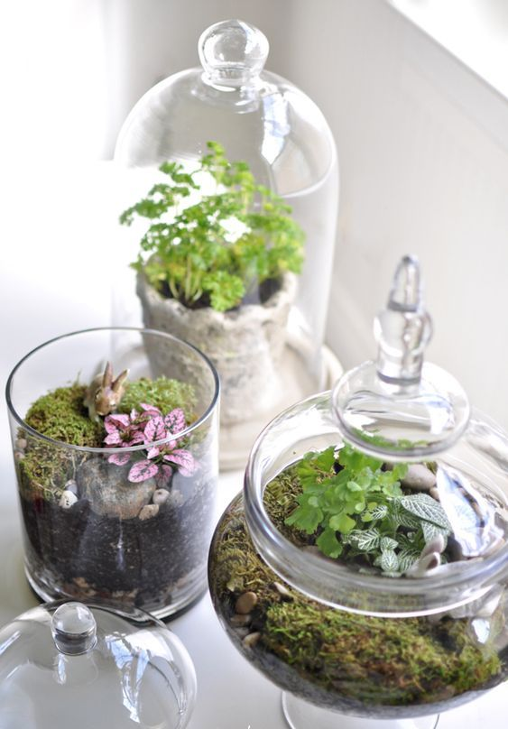jars and a cloche with moss, greenery, pebbles and bunnies are amazing for a spring-inspired space