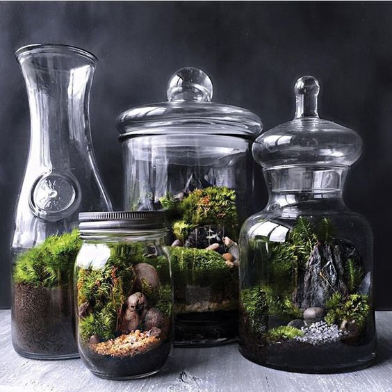 jars and carafes with moss, pebbles, rocks and twigs show off woodlands in the spring