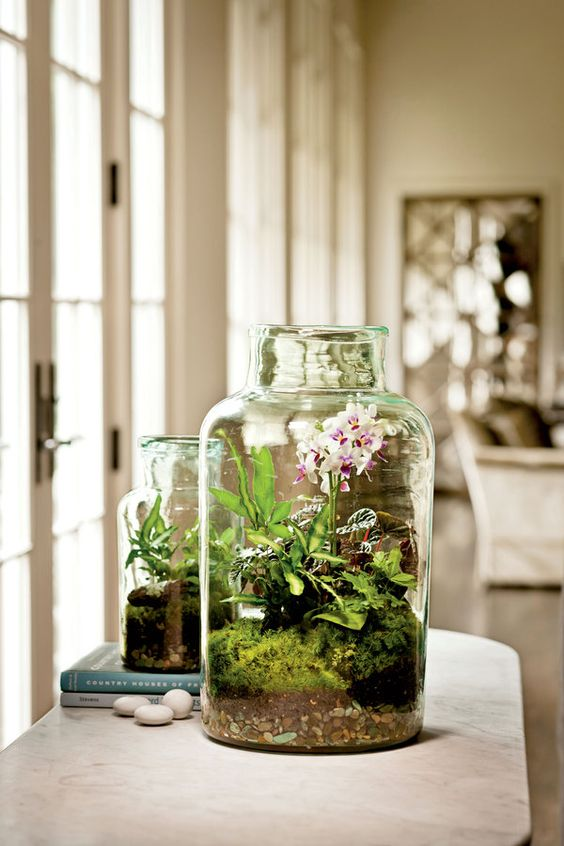 jars with moss, greenery and orchids are lovely for spring decor, they bring a slight spring touch to the space