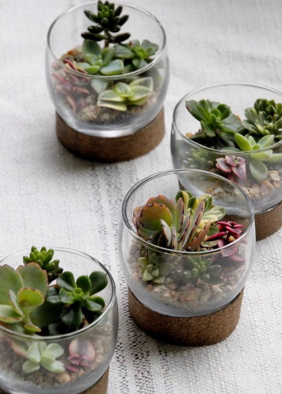 mini glass terrariums with succulents in various colors and pebbles are great to refresh the space