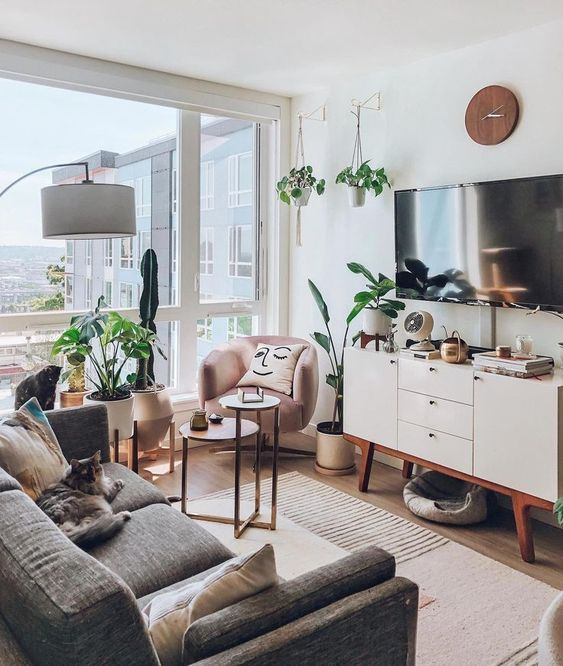 a small boho living room with a grey sofa, a pink chair, a glazed wall, potted plants and a white TV unit