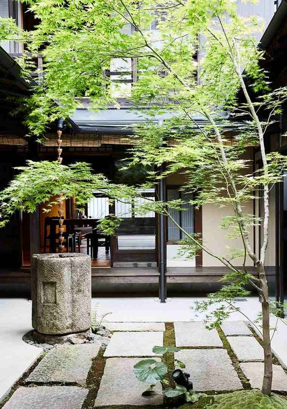 a Japanese courtyard with stone tiles, greenery, a stone bowl and a tree is a dreamy space that relaxes