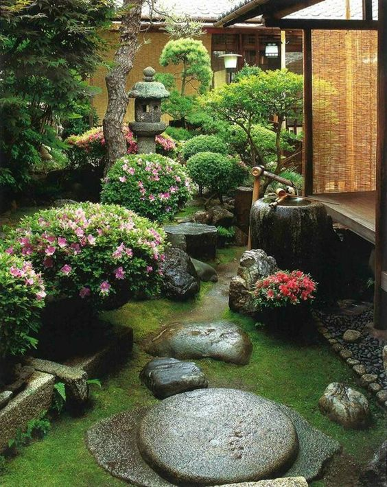 a beautiful Japanese garden with grass, rocks, blooms, a bamboo fountain and a stone lantern plus some low trees