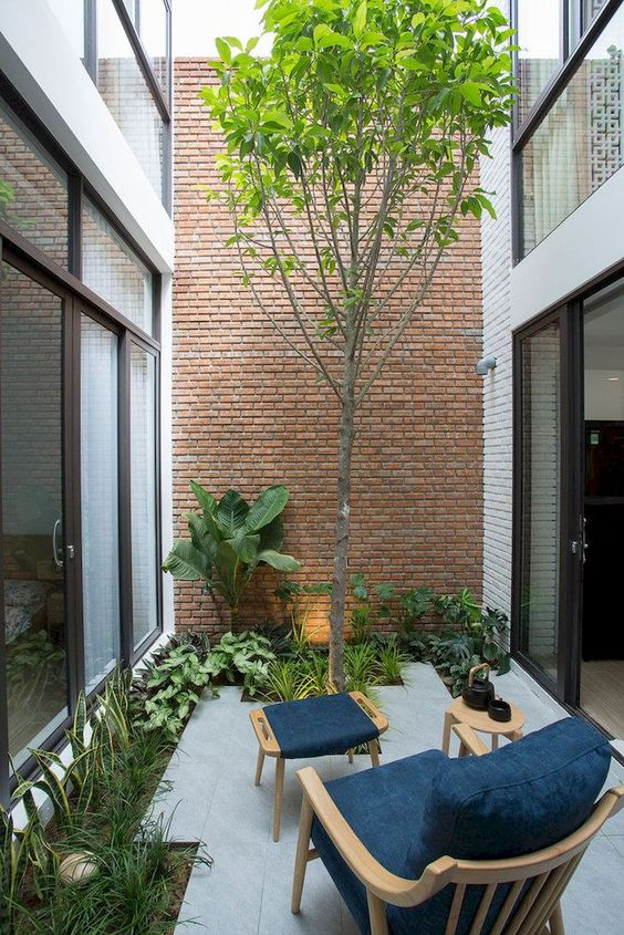 a contemporary inner courtyard with some greenery and a tree growing, a chair with a footrest and a table