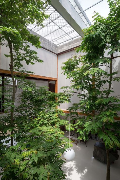 a large indoor courtyard with lots of trees and plants is a cool solution in case you have very high ceilings