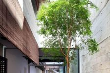 a small indoor courtyard with a single tree and brick and concrete refreshes the look of the interiors and brings a natural feel