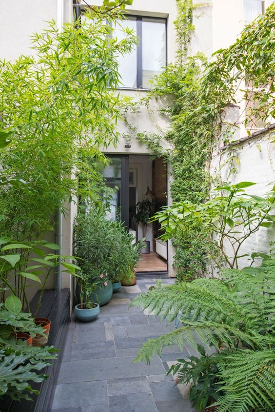 a small townhouse garden clad with stone tiles, potted greenery and living walls plus a built in bench