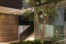 a stylish indoor courtyard with a large flower bed with greenery and a tree plus a bench attached to it