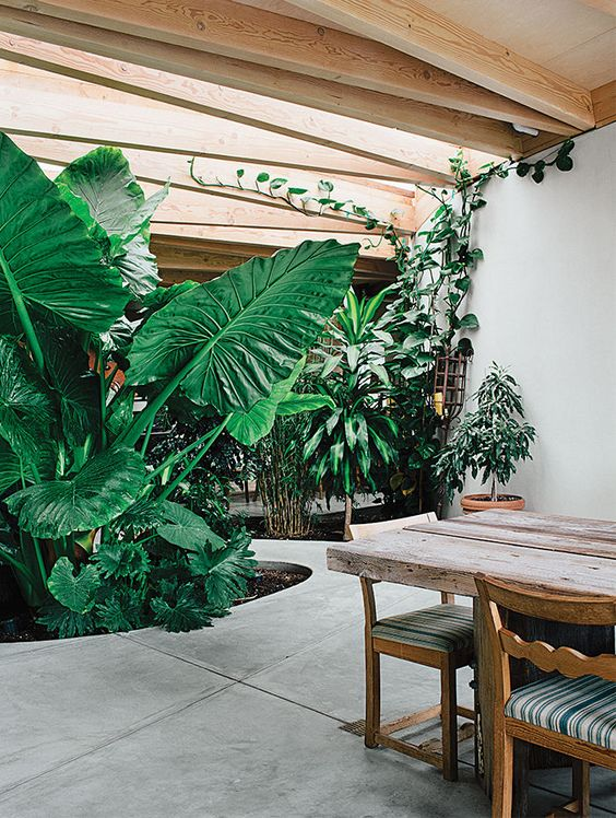 a tropical indoor courtyard with several flower beds cut out in the concrete and lots of light from skylights