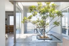 an indoor courtyard with a water body and a tree growing right out of it and lit up with a skylight