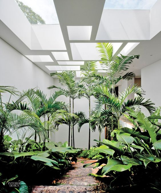 an indoor courtyard with lots of tropical greenery and geomtric skylights looks like a real garden