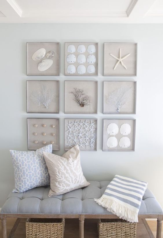 a cool gallery wall with seashells, starfish, corals and other sea stuff for a coastal entryway