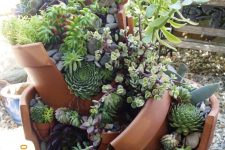 a creative planter with broken parts and lots of various succulents is a super creative and bold-looking idea