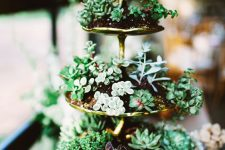 a gold tiered stand with lots of succulents here and there is a stylish vintage display with plenty of chic