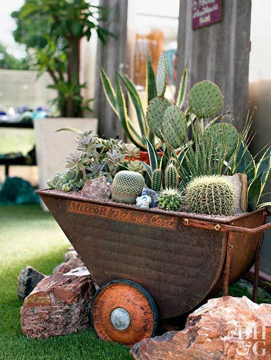a large metal cart with succulents and cacti is a stylish and bold rustic decor idea for outdoors