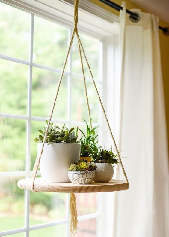 How To Display Succulents 59 Cute Examples Digsdigs
