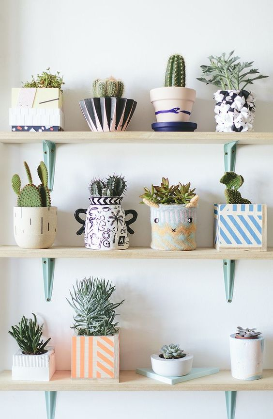 a whole arrangement of bright and fun planters of various patterns, looks and colors and cacti and succulents