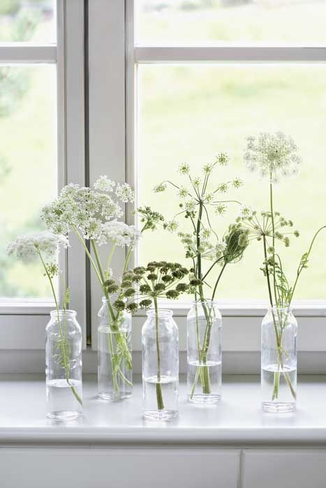 bottles with white blooms will beautifully line up the windowsill or some other space