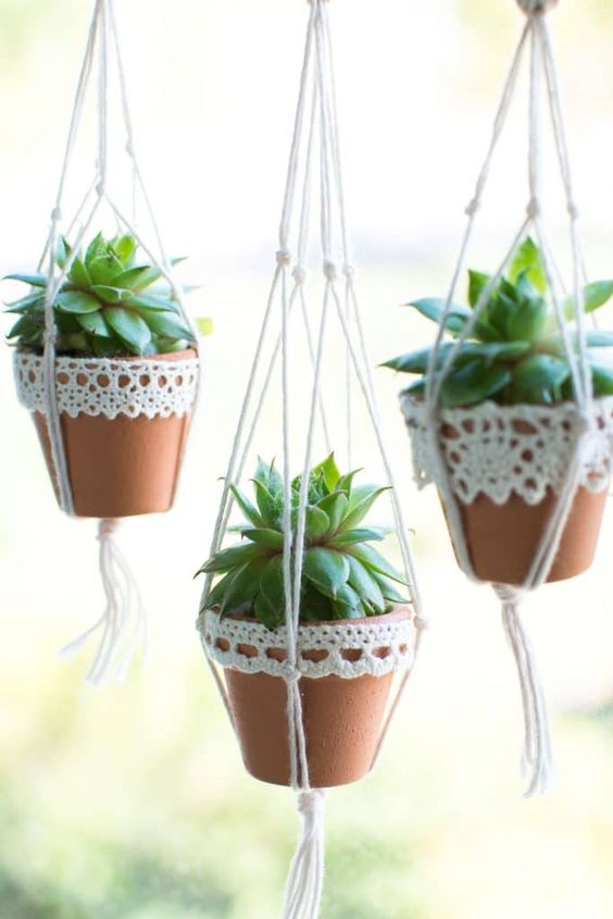 suspended planters with succulents are a very cool boho-inspired idea for displaying succulents