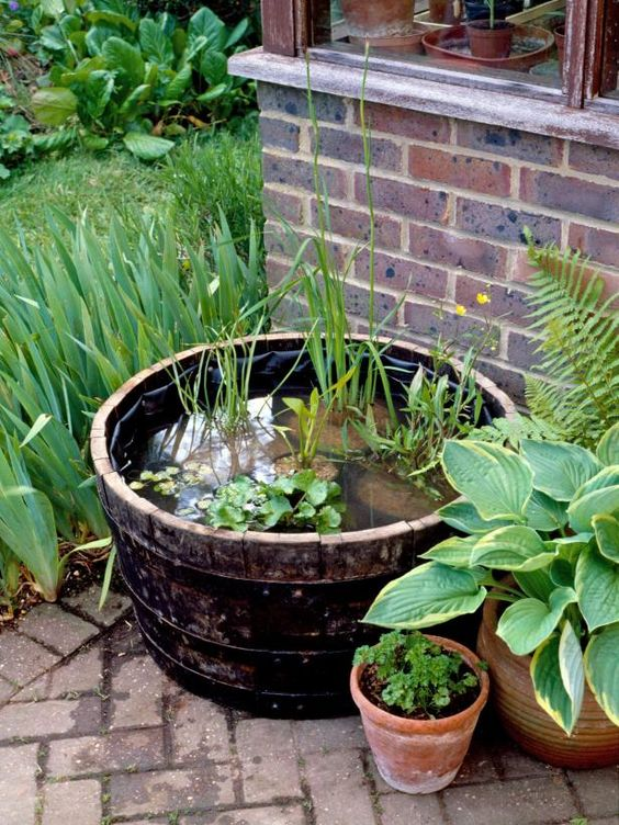 a barrel water garden with greenery and rocks and green plants around for a natural touch in your garden