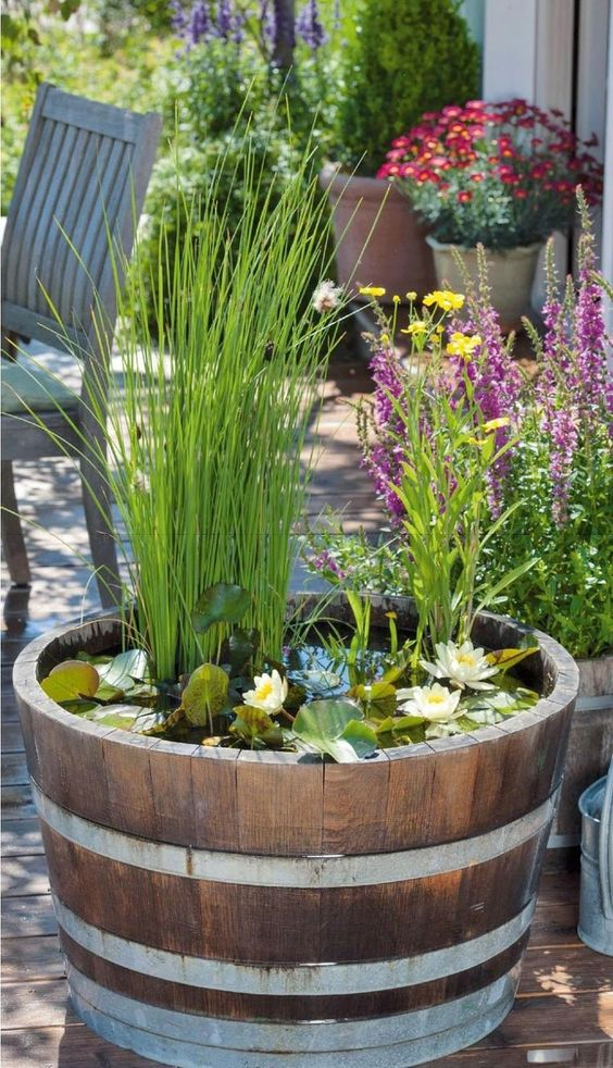 a barrel water garden with water lilies and greenery for a slight romantic and rustic touch to the space