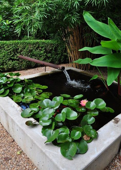 a square mini pond clad in concrete, with water lilies and a tube waterfall is a lovely modern idea for outdoors