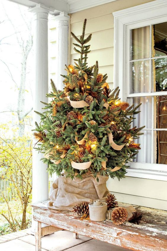 a wooden bench with a lovely Christmas tree with lights, burlap ribbons and pinecones plus pinecones around will make the space rustic