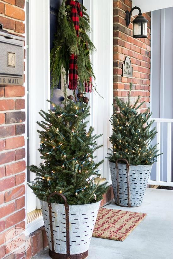 mini Christmas trees in buckets with lights, a fir branch hanging with a plaid scarf make the porch look rustic and cozy