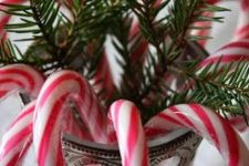 a simple Christmas decoration of a jar, fir branches and candy canes is a bold and lovely centerpiece to rock