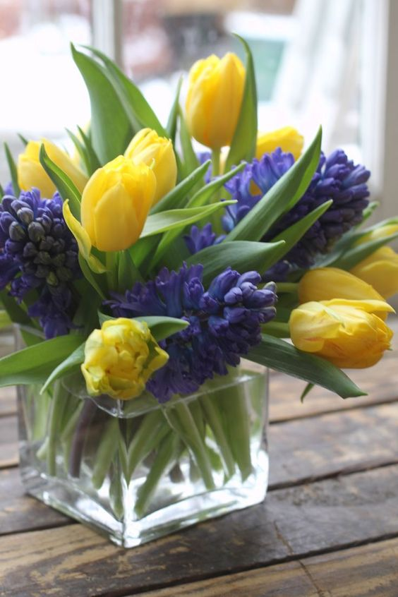 a clear vase with purple hyacinths and yellow tulips is a bright and fun spring flower arrangement or centerpiece