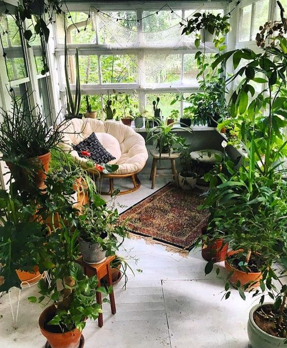 a small yet cozy boho sunroom turned into an orangery, with lots of potted plants and greenery, a round chair and some stools